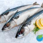 Balık derin dondurucuda nasıl saklanır?