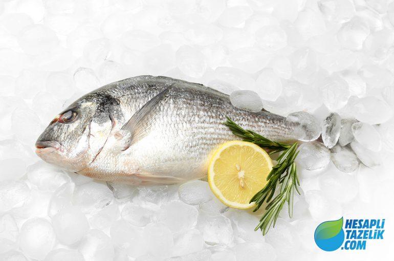 Balık Derin Dondurucu'da Nasıl Saklanır?